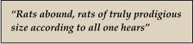 """Rats abound, rats of truly prodigious size according to all one hears"""